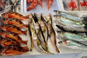 market_fish4