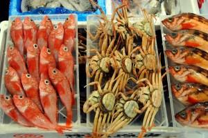 market_fish5